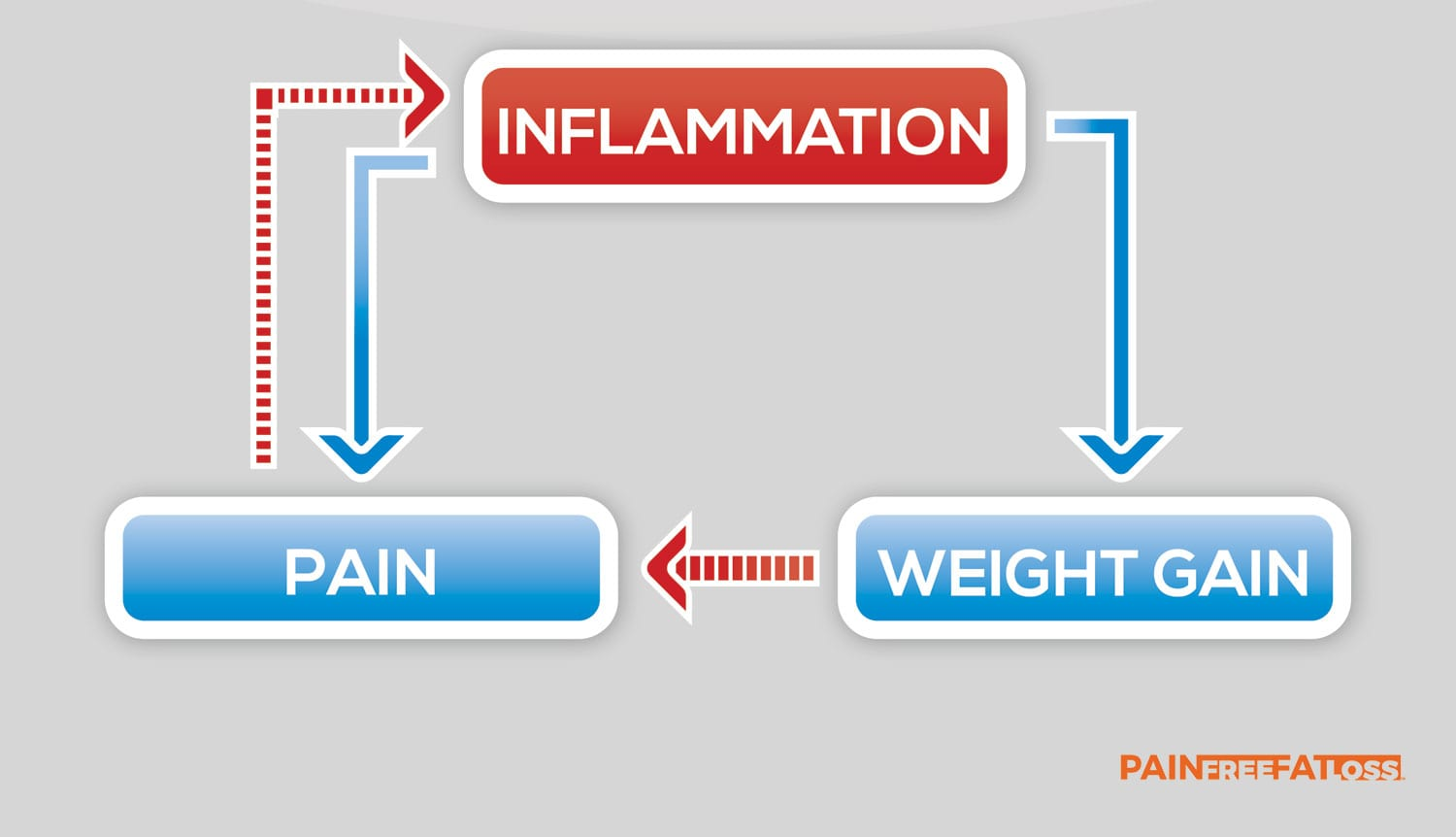 Anti-Inflammatory Diet Example - Pain-Free Fat Loss